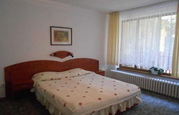 фото отеля Калина изображение №21