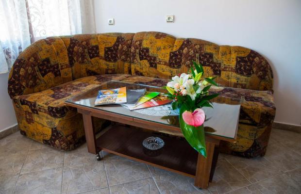 фото Guest House Pri Ani (Къща При Ани) изображение №10