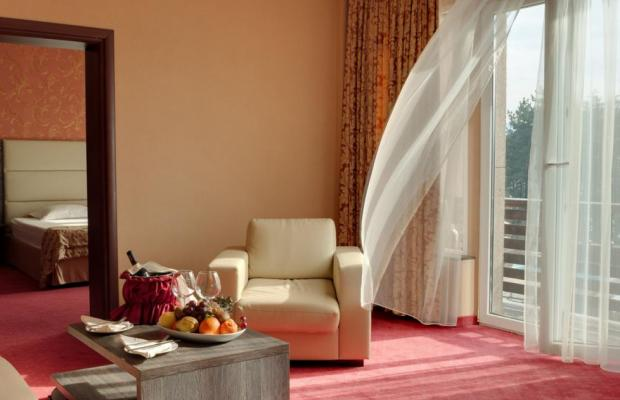 фотографии Spa Hotel Dvoretsa (Спа Хотел Двореца) изображение №24