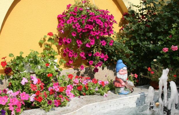 фотографии отеля Bistra & Galina (ех. Best Western Bistra & Galina) изображение №27