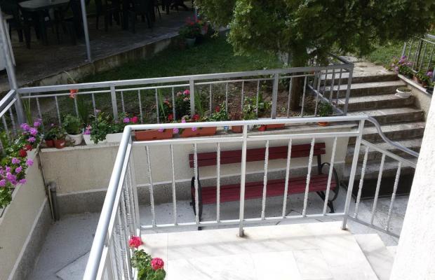фото отеля Орфей (Orpheus) изображение №25