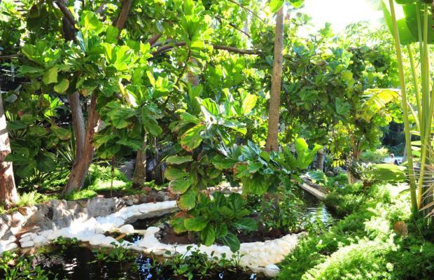фото отеля Parque Tropical изображение №21