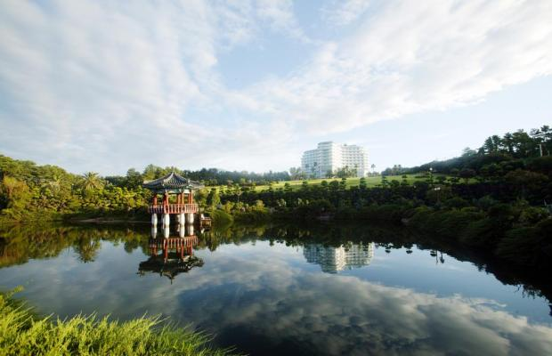 фотографии отеля Kal Seogwipo изображение №27
