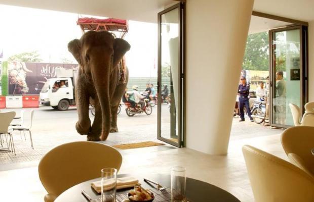 фото отеля The Quay Boutique Hotel изображение №5