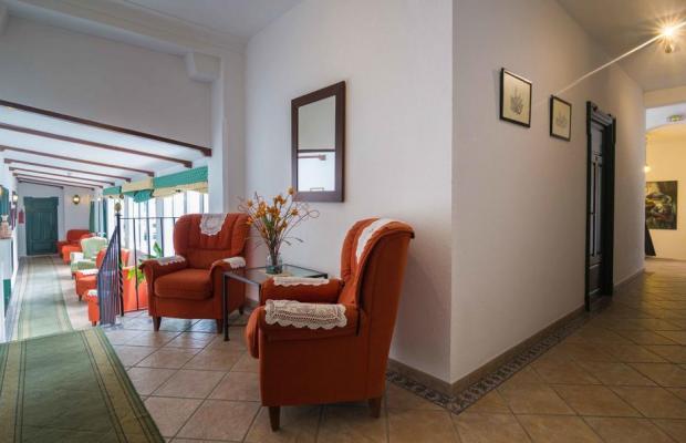 фотографии отеля Los Olivos изображение №11