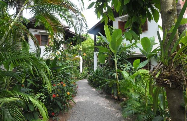 фотографии отеля La Noria Hotel изображение №3