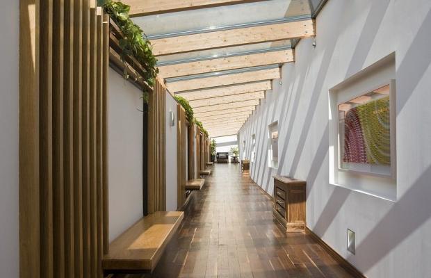 фотографии отеля Castlemartyr Resort Hotel изображение №11
