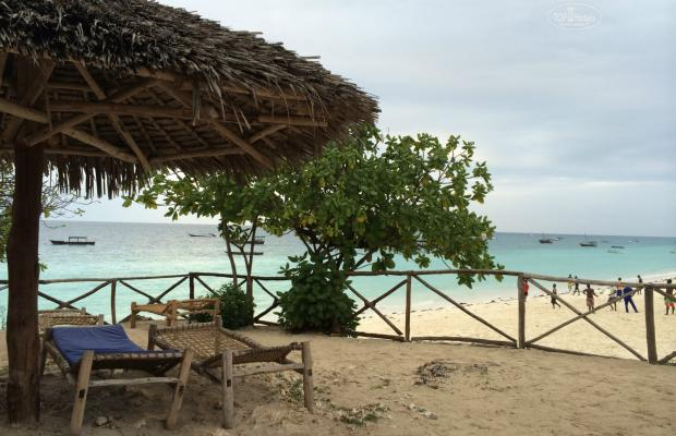 фотографии отеля Baobab Beach Bungalows изображение №31