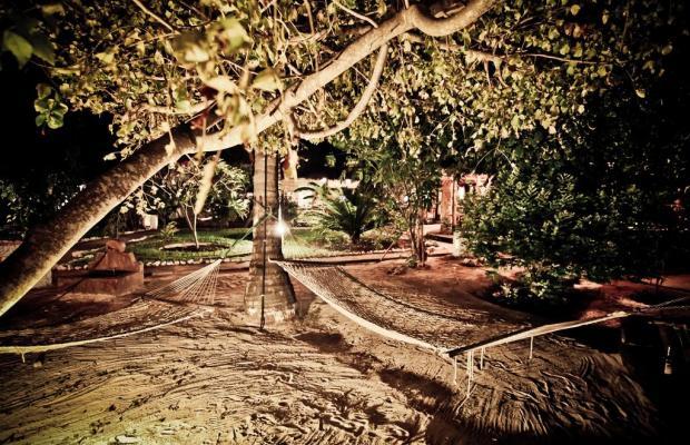фотографии Paje By Night изображение №12