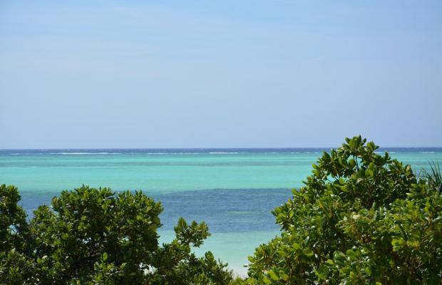 фотографии Neptune Pwani Beach Resort & Spa изображение №4