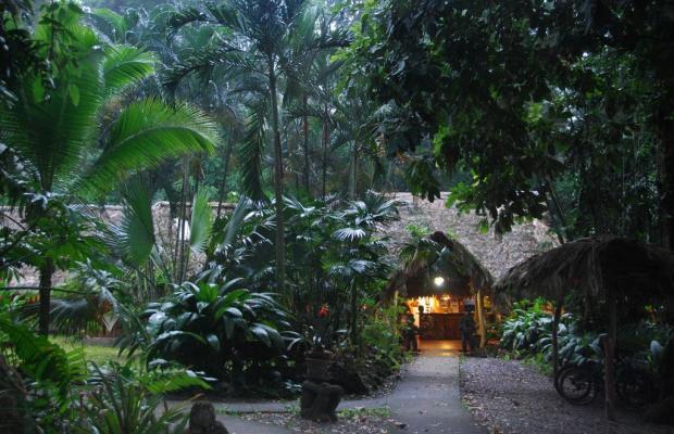 фото отеля Cariblue Beach and Jungle Resort изображение №89