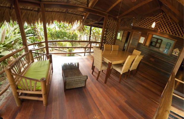 фотографии отеля Cariblue Beach and Jungle Resort изображение №27