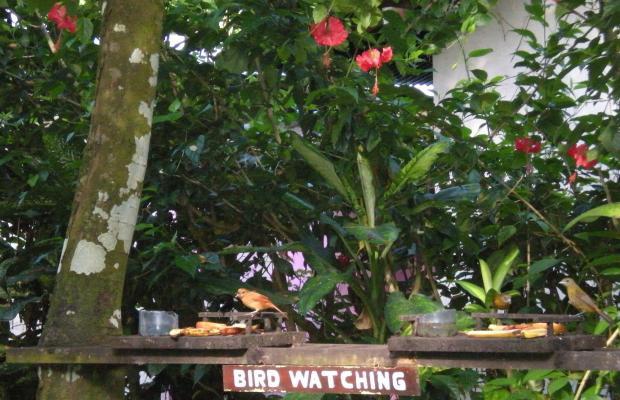 фотографии отеля Escape Caribeno изображение №27