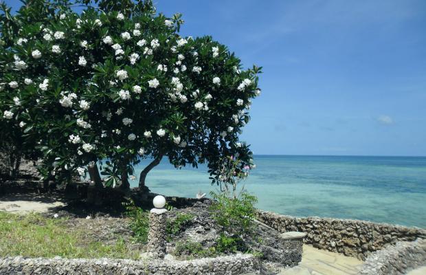 фотографии Kivulini Luxury Resort изображение №8