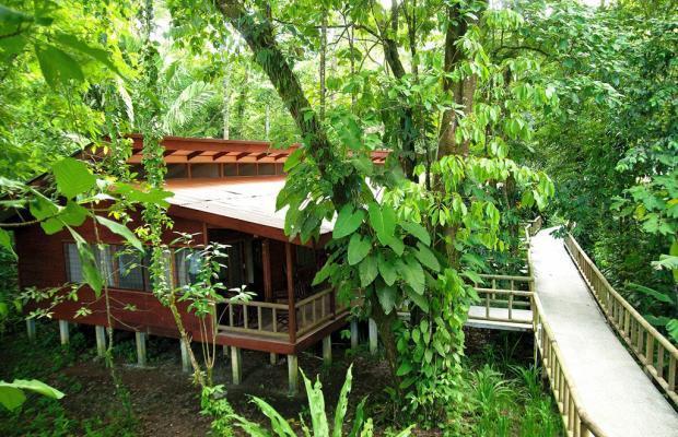 фотографии отеля Evergreen lodge изображение №71