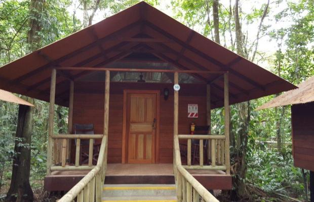фото Evergreen lodge изображение №38