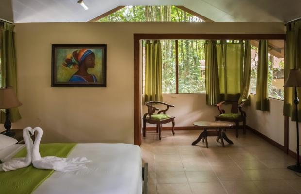 фотографии отеля Evergreen lodge изображение №27