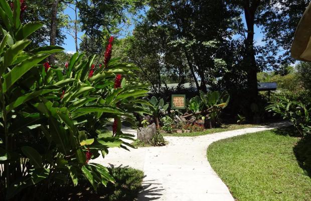 фотографии отеля Laguna Lodge изображение №11