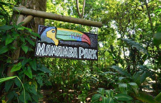 фотографии отеля Mawamba Lodge изображение №11