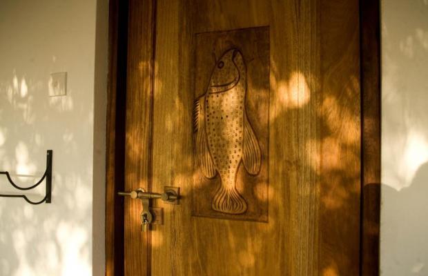 фотографии отеля The Manta Resort изображение №19