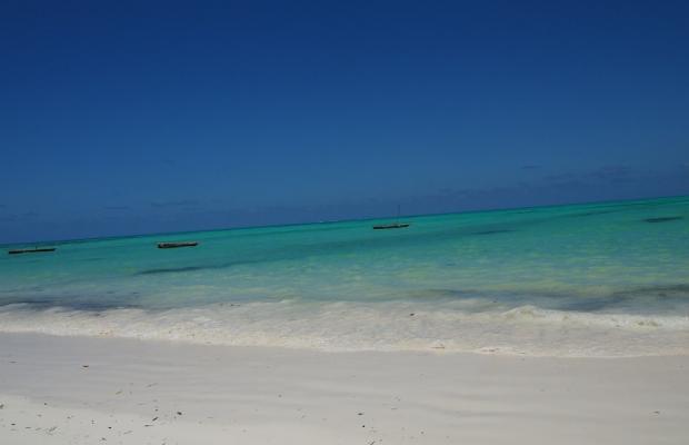 фотографии отеля Zanzibar Dolphin View Paradise Resort & Spa изображение №7