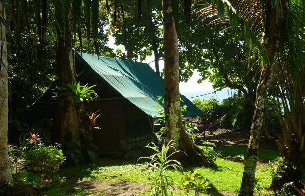 фотографии отеля Corcovado Adventures Tent Camp изображение №19