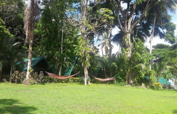 фотографии Corcovado Adventures Tent Camp изображение №16