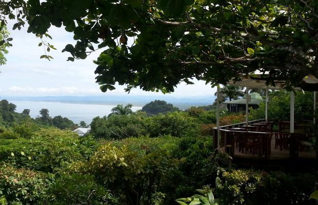 фото Buena Vista Luxury Villas изображение №94