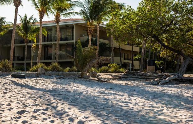 фотографии отеля Flamingo Beach Resort изображение №15