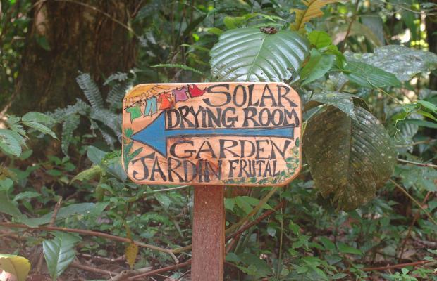 фотографии отеля Playa Nicuesa Rainforest Lodge изображение №11