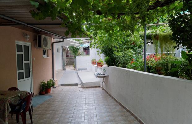 фотографии Villa Milica изображение №24