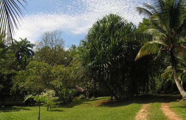 фотографии отеля Suital Lodge изображение №3