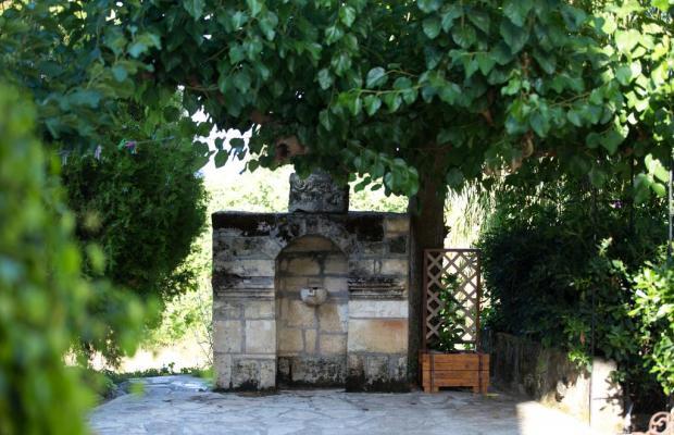 фото Studios Dimitra изображение №6