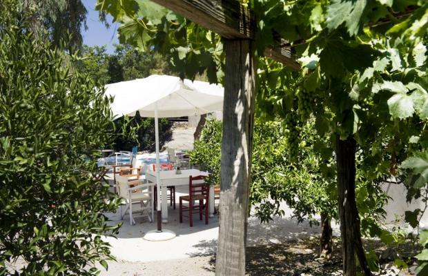 фотографии Konstantakis Сave Winery изображение №4