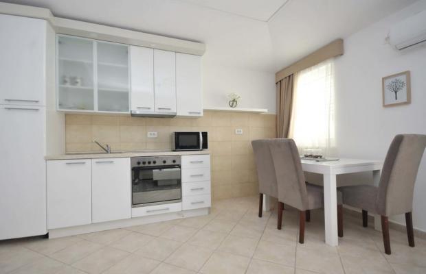 фотографии Seaside Apartments Petrovac изображение №4