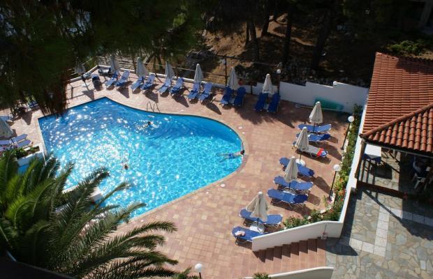 фото Paradise Hotel изображение №14