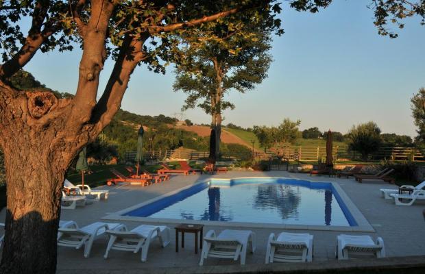 фотографии отеля Poggio agli Ulivi изображение №31