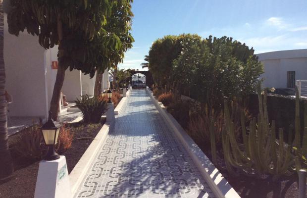 фотографии отеля Apartamentos Aloe изображение №15