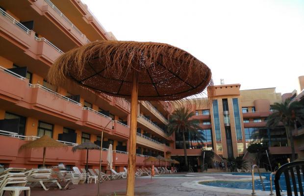 фото отеля Apartahotel Advise Reina изображение №5
