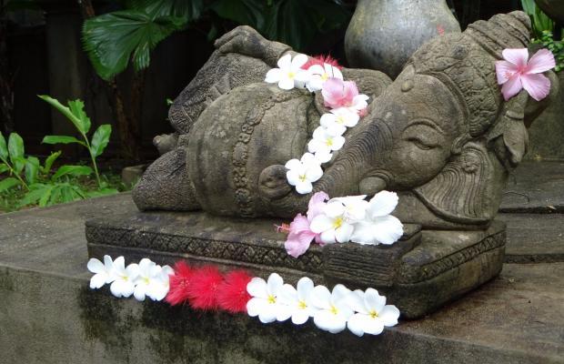 фотографии отеля Khaolak Bhandari Resort & Spa изображение №15