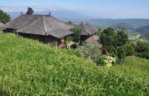 фотографии Puri Lumbung Cottages изображение №16