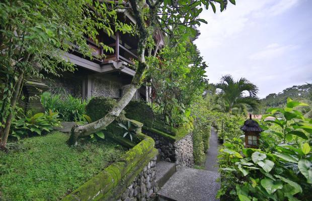 фотографии Bali Spirit Spa изображение №24