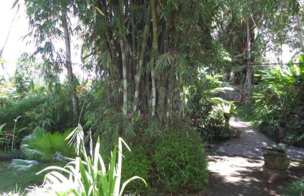 фотографии Sayan Terrace Resort изображение №24
