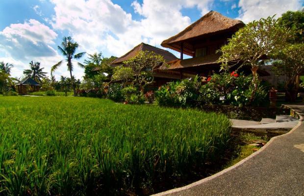 фотографии отеля Agung Raka Resort and Villa изображение №35