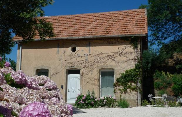 фотографии отеля L'Orangeraie изображение №7