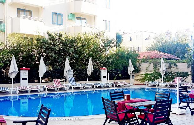 фото отеля Almena изображение №1