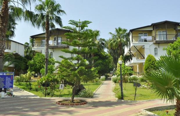 фото отеля Club Serena Beach (ex. Calypso Beach) изображение №13