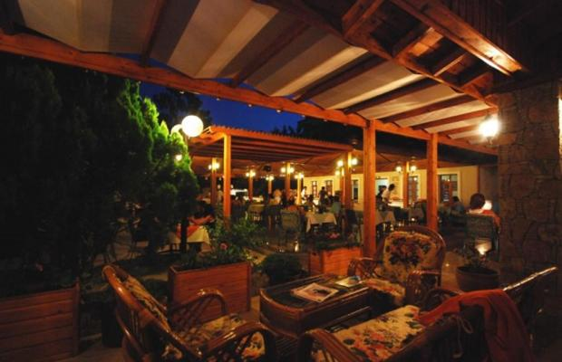 фотографии отеля Perdikia Beach Hotel изображение №3