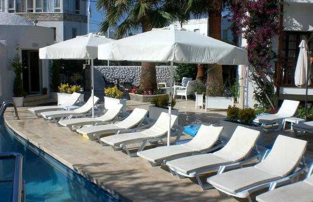 фотографии Orion Hotel Bitez изображение №24