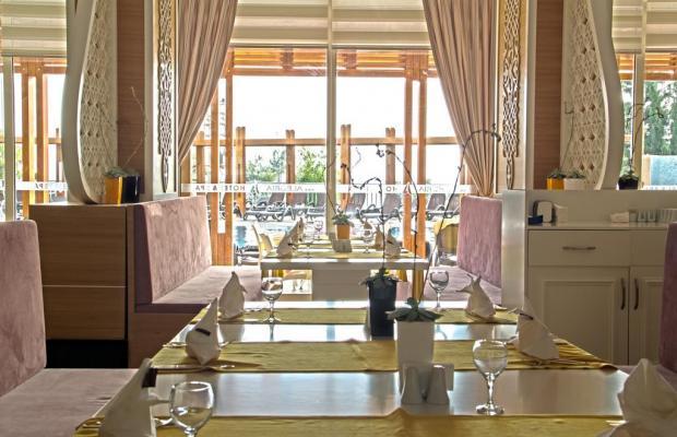 фотографии отеля Side Alegria Hotel & Spa (ex. Holiday Point Hotel & Spa) изображение №27